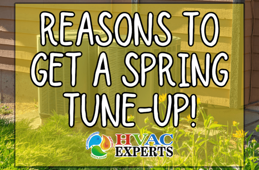 Reasons To Get A Spring Tune-Up